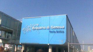 Visita all'Acquario di Genova: tante offerte per tutti