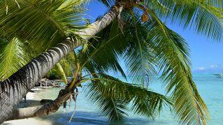 Come raggiungere Bora Bora per una vacanza o un trasferimento
