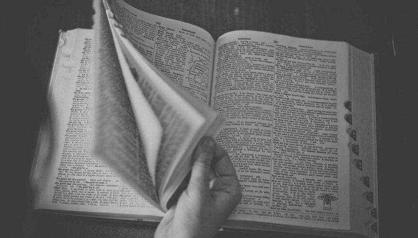 I migliori vocabolari di italiano, ecco dove trovarli online