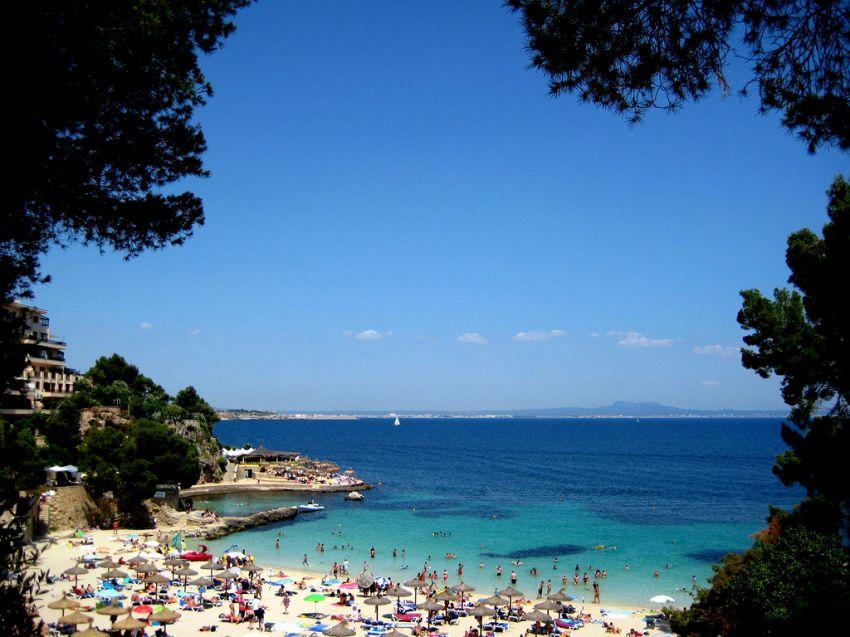Palma di Maiorca: la perla del Mediterrano tutta da scoprire