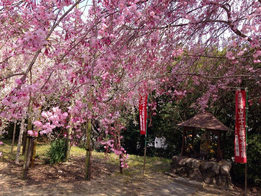 Il clima a Tokyo: in che stagione è meglio partire