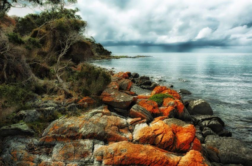 Vivere e lavorare in Tasmania: tutto quello che c'è da sapere