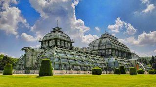 Vienna: un gioiello tutto da scoprire nel cuore dell'Austria
