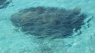 Dove alloggiare a Baia dei Turchi: la lista dei migliori resort