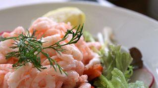 Ricette per gustosi antipasti di pesce per le vostre cene