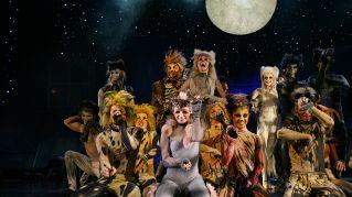 Cats, uno dei più famosi musical americani, diventa un film