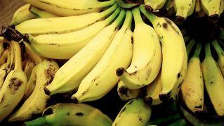 Alimenti ricchi di potassio: nutrizione e proprietà dei Cibi