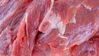 Alimenti ricchi di proteine: nutrizione e proprietà dei Cibi