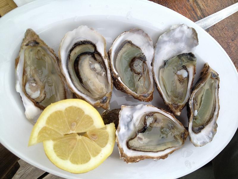 Alimenti ricchi di zinco: nutrizione e proprietà dei Cibi