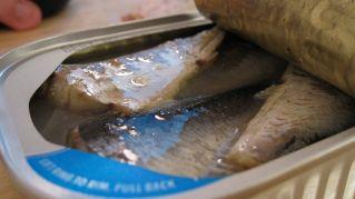 Alimenti ricchi di istamina: nutrizione e proprietà dei Cibi