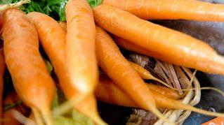 Alimenti ricchi di vitamina a: nutrizione e proprietà dei Cibi