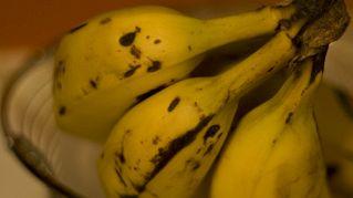 Alimenti ricchi di potassio e magnesio: nutrizione e proprietà dei Cibi