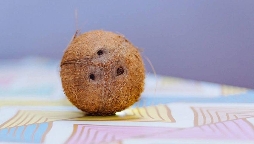 Come aprire una noce di cocco in maniera semplice