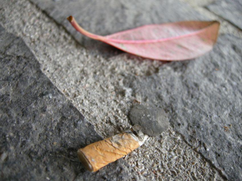 Fumo, mozziconi e ambiente, quanto inquinano le sigarette?