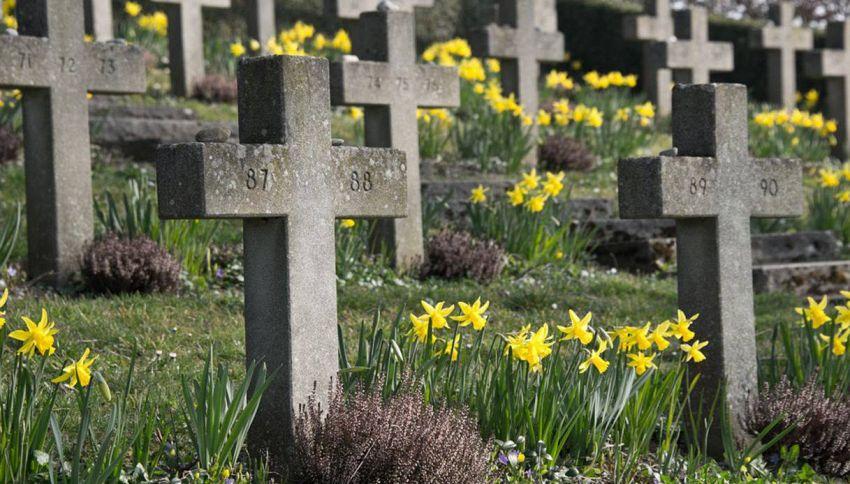 Frasi per funerale: esprimere cordoglio con garbo