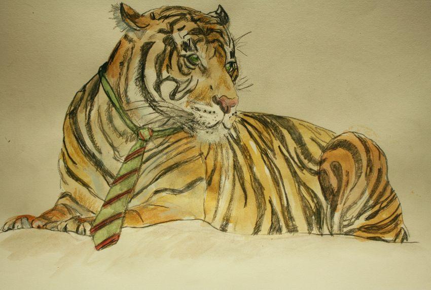 Animali della giungla da colorare, dove scaricare i disegni per bambini