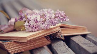 Dead Writers, il profumo che sa di vecchi libri e biblioteche