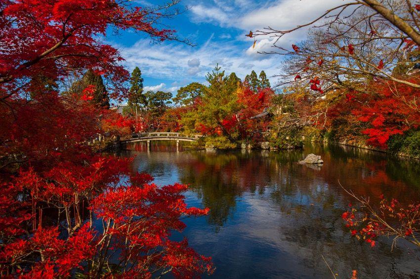 Benefici del giardino zen: filosofia orientale a disposizione