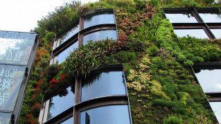 Classifica dei 5 giardini verticali più belli del mondo