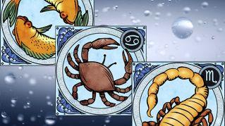 Zodiaco e segni di Acqua, affinità e compatibilità con altri segni