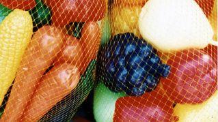 La sclerosi multipla si combatte con una dieta ipocalorica