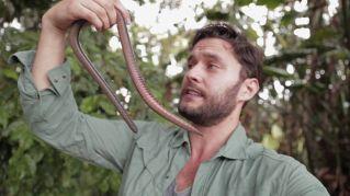 Sembra un serpente ma non lo è, eppure striscia...