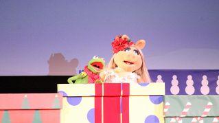 Donna spende 18000 euro per assomigliare a Miss Piggy (e Beyonce)