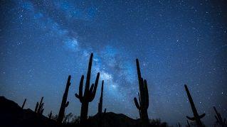 Sognate di incontrare gli alieni? Se ne riparla tra 1500 anni