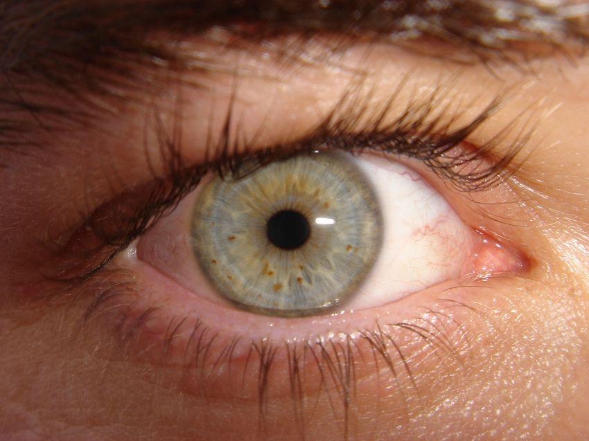 Una lente bionica vi farà vedere meglio e più lontano, per sempre