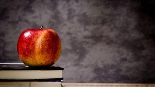 Le due mele, ovvero come spiegare il bullismo ai ragazzi a scuola