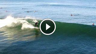 Lo spettacolare video dei delfini che nuotano tra i surfisti