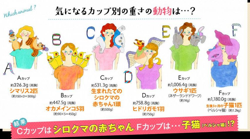 Il tuo seno pesa come due scoiattoli? Scoprilo con la tabella giapponese
