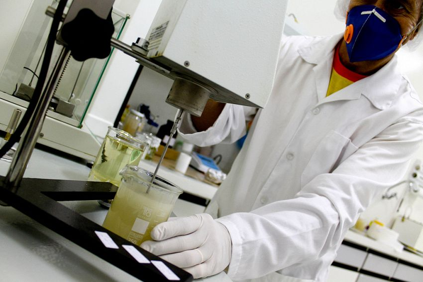 L'uomo in un chip, scienziati creano la cavia umana ideale