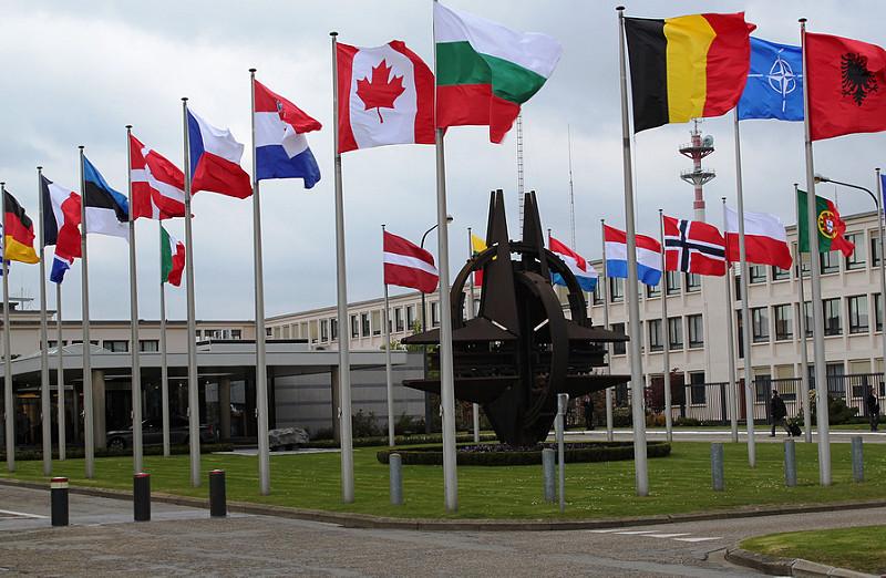Cosa significa la sigla NATO in ambito politica estera?