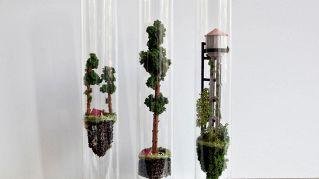 Un'artista crea splendidi mini mondi in provetta