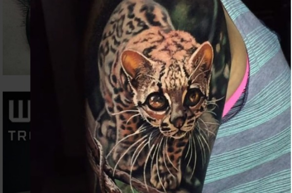 Gli incredibili tatuaggi realistici di Steve Butcher