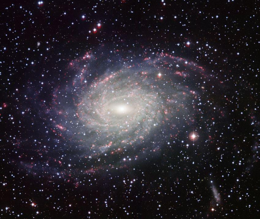 Il cielo ha un angolo buio, dove non nascono stelle da milioni di anni