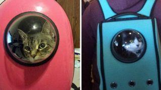 Gatti o astronauti? Ecco gli zaini spaziali per i nostri piccoli amici