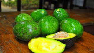 Il meglio della tecnologia, inventata la macchina per conservare gli avocado