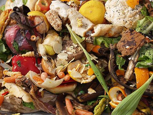 Il freeganesimo è di moda: come mangiare cibo recuperato dalla spazzatura