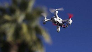 Dai droni agli elefanti, nuove e vecchie tecnologie per filmare la natura