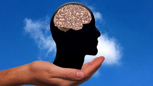 Le persone intelligenti sono disordinate, imprecano e non dormono mai
