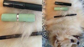 Creme, rossetti e... gatti: svelato il segreto delle beauty blogger famose