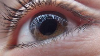 Nella cannabis ci sono sostanze che migliorano la vista