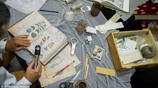 Il manoscritto di Voynich, il libro più misterioso del mondo, non è più così misterioso