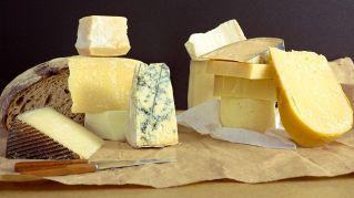 Via libera ai formaggi grassi e stagionati: fanno salire il colesterolo 'buono'