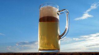 La birra è più salutare del latte, lo dice la PETA