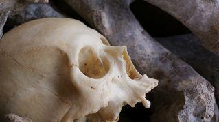 Che ci fanno scheletri cinesi in un antico cimitero romano a Londra?
