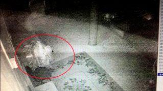 Monaco buddista mummificato torna in vita e infesta le sale di un museo