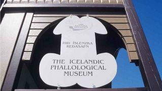 Visitate il Museo del pene, è in Islanda